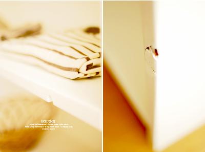 Shelf03