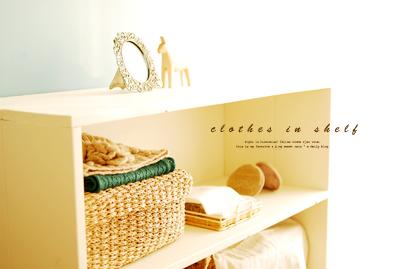 Clothesinshelf01
