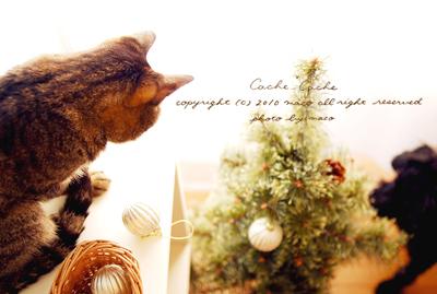Christmas201001