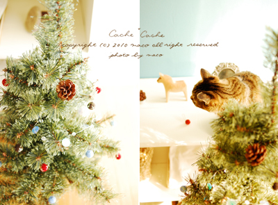 Ornament02