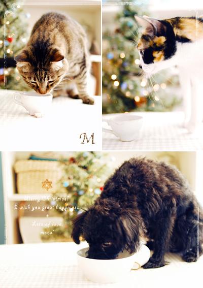 Merrychristmas201002