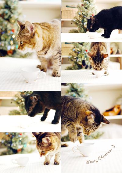 Merrychristmas201004
