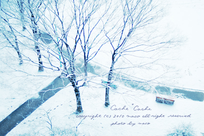 Snow201101