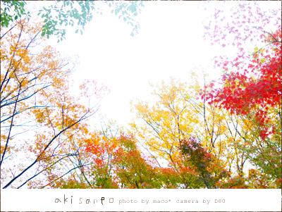 Akisanpo20111_2