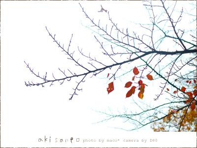 Akisanpo201104