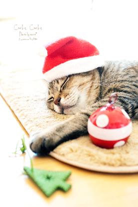 Christmas201106
