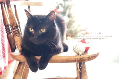 Christmas201111_2