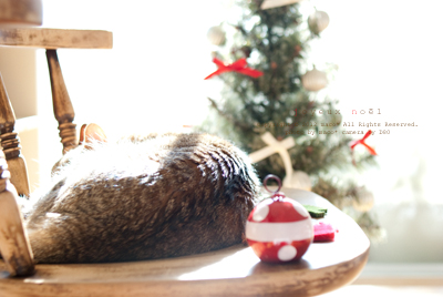Christmas201112