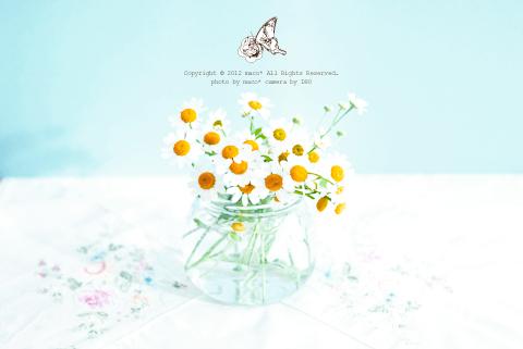 Spring_6
