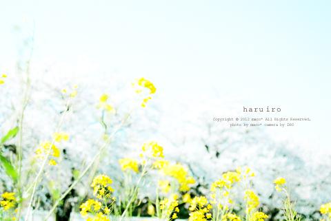 Haruiro201202