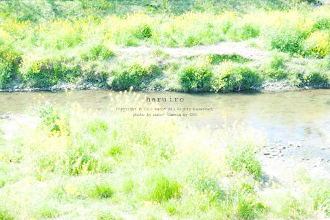 Haruiro201203
