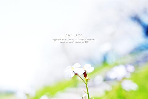 Haruiro201207