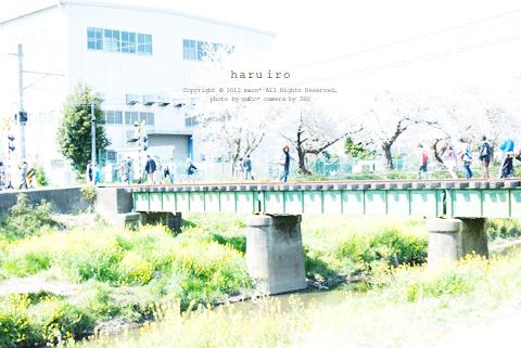 Haruiro201209_3