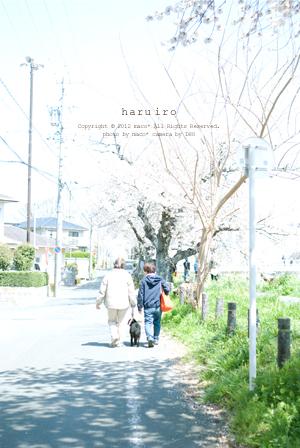 Haruiro201211