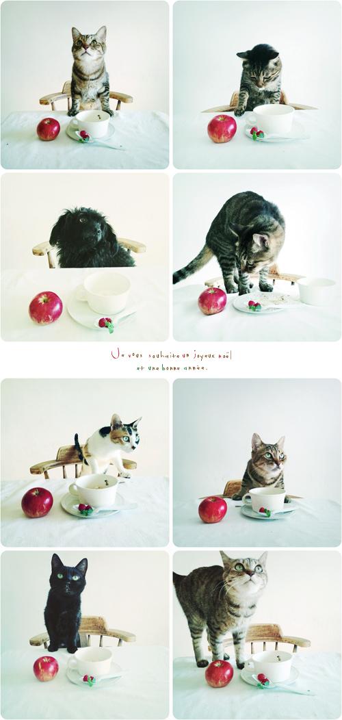 Christmas2012_3