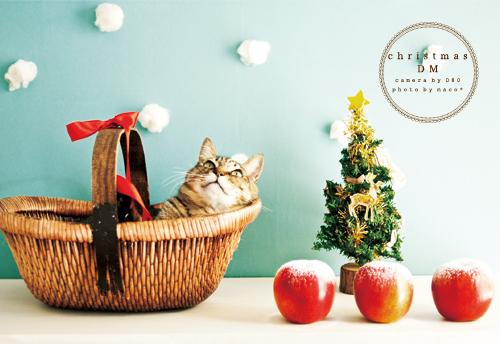Christmasdm201303